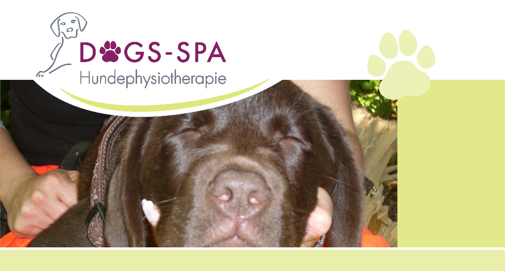 Dogs spa Hundephysiotherapie